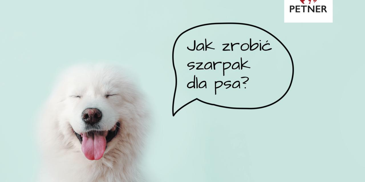 https://petner.com.pl/wp-content/uploads/2019/12/jak-zrobic-szarpak-dla-psa-min-1280x640.png