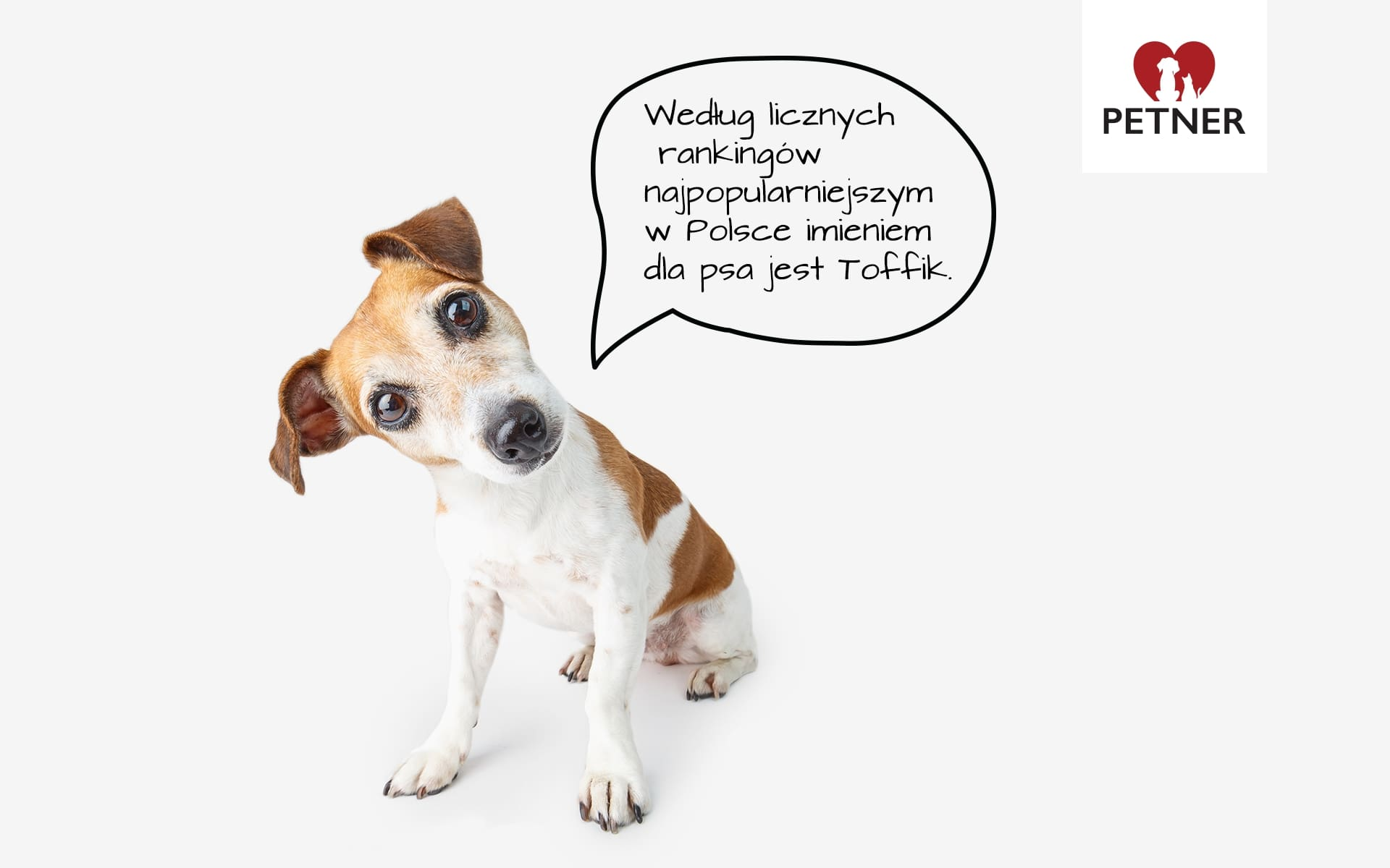 najpopularniejsze imiona dla psa
