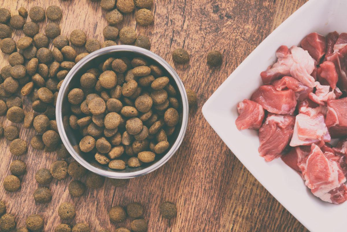 surowe mięso dla psa