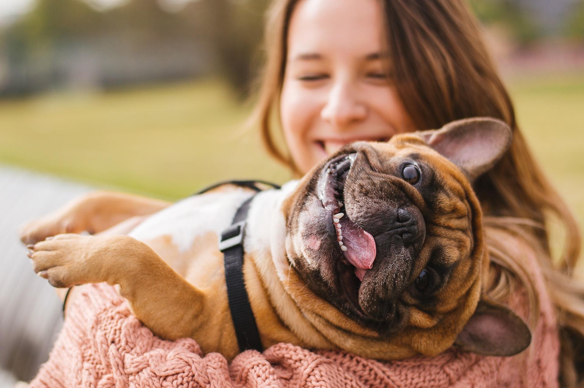 korzyści z posiadania psa