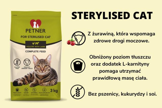 sterylizacja kotki plusy i minusy