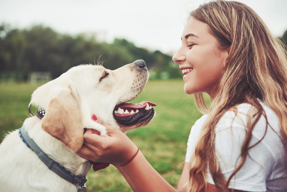 Frame with a beautiful girl with a beautiful dog in a park on green grass