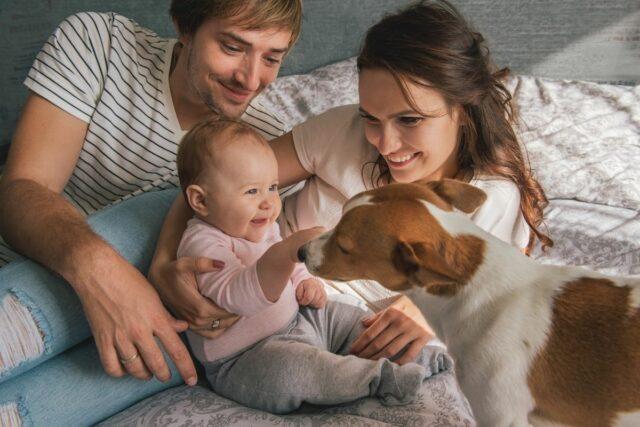 najłagodniejsze psy dla dziecka